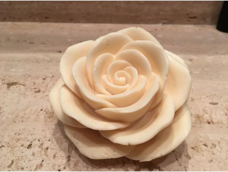 Rosa grande 3D